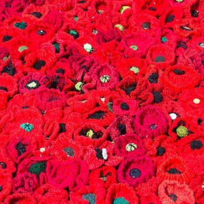 A field of poppies at Chelsea