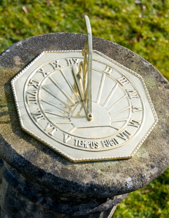 Tempus Fugit Sundial Plate
