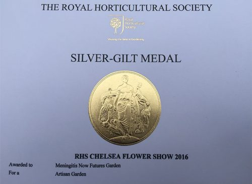 Meningitis Now Futures Garden wins Silver-Gilt RHS Medal