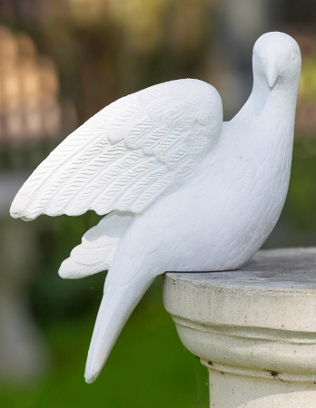 http://www.chilstone.com/garden-ornaments-statues-and-sculptures/dove