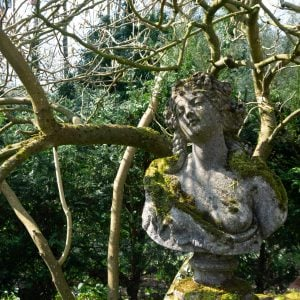 Aged Stone Bust Against Magnolia Tree Backdrop