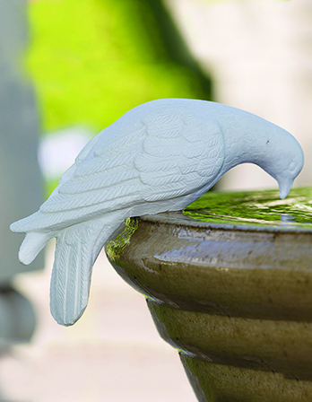 Dove Sculpture Drinking