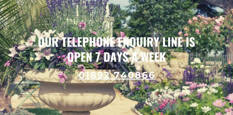 Enquiry line open 7 days a week 01892 740866
