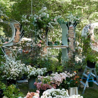 Virtual Chelsea – Flower trends and Beautiful Blooms from the RHS Chelsea Flower Shows