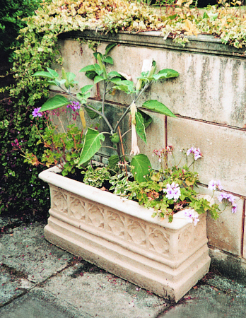 https://www.chilstone.com/garden-ornaments-category/double-length-gothic-revival-wall-trough