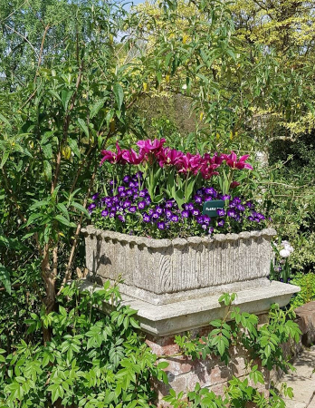 https://www.chilstone.com/garden-ornaments-category/regency-square-trough